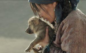 Wolf Totem: Bir Zamanlar Doğal Yaşam Vardı