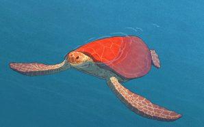 The Red Turtle: Birbirimize Vitaminler, Moraller Verdik