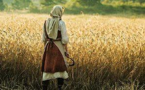 Vrba: Ne Anlatmak İstediğini Bilmeyen Bir Film