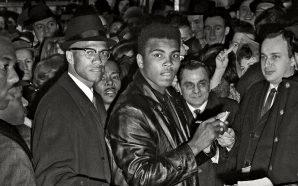 Blood Brothers: Muhammed Ali – Malcolm X Dostluğu Dizi Oluyor